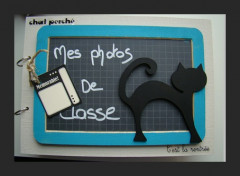 album photos de classe « Chat »